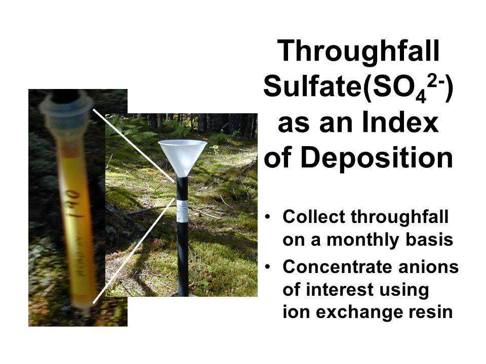 Throughfall Sulfate(SO 4 2- ) as an Index of Deposition Collect throughfall on a monthly basis Concentrate anions of interest using ion exchange resin
