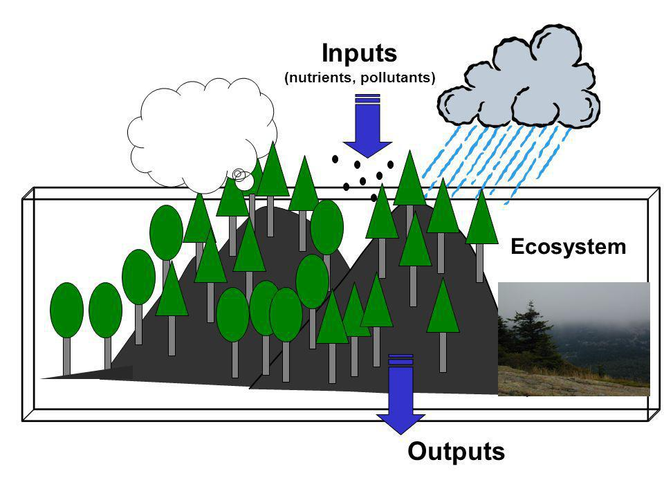 Ecosystem Inputs (nutrients, pollutants) Outputs