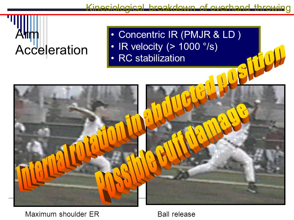 Concentric IR (PMJR & LD ) IR velocity (> 1000 °/s) RC stabilization Kinesiological breakdown of overhand throwing Arm Acceleration Maximum shoulder ERBall release