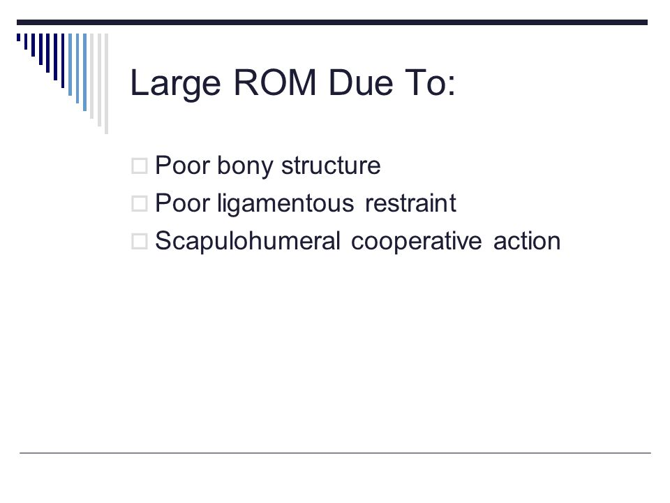 Large ROM Due To: Poor bony structure Poor ligamentous restraint Scapulohumeral cooperative action