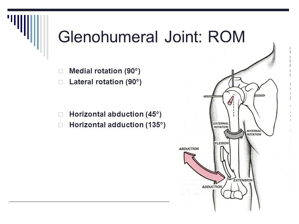 Glenohumeral Joint: ROM Medial rotation (90°) Lateral rotation (90°) Horizontal abduction (45°) Horizontal adduction (135°)