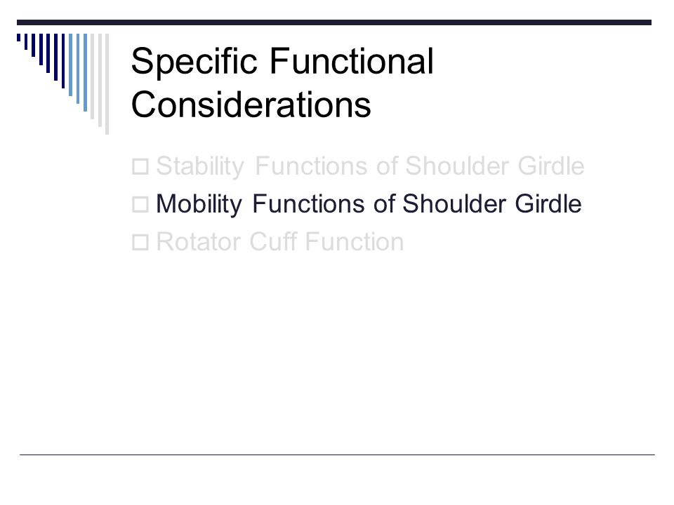 Specific Functional Considerations Stability Functions of Shoulder Girdle Mobility Functions of Shoulder Girdle Rotator Cuff Function
