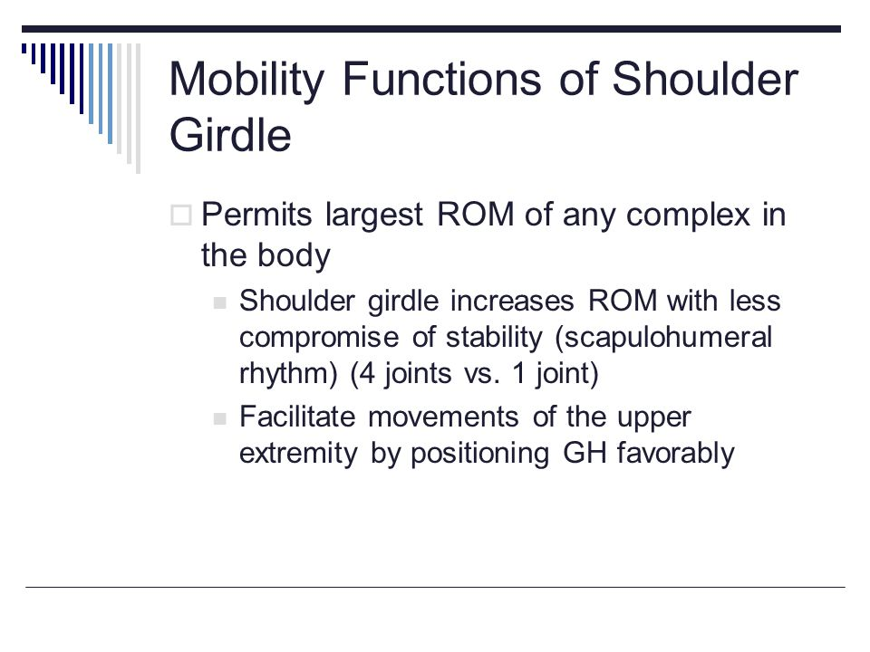 Mobility Functions of Shoulder Girdle Permits largest ROM of any complex in the body Shoulder girdle increases ROM with less compromise of stability (scapulohumeral rhythm) (4 joints vs.