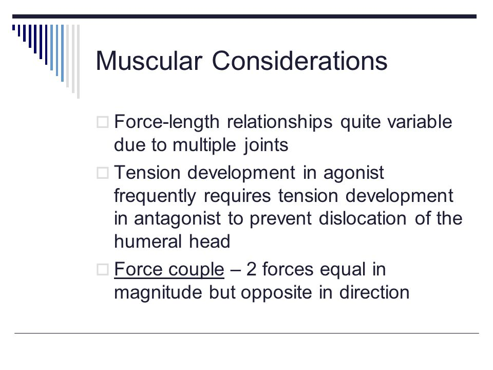 Muscular Considerations Force-length relationships quite variable due to multiple joints Tension development in agonist frequently requires tension development in antagonist to prevent dislocation of the humeral head Force couple – 2 forces equal in magnitude but opposite in direction
