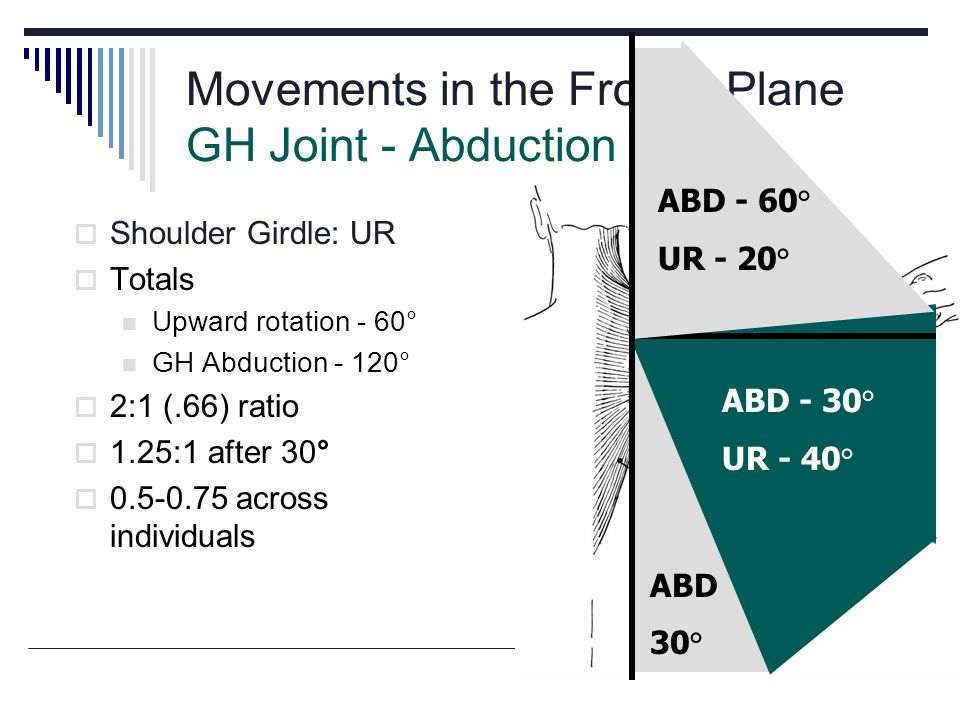 Movements in the Frontal Plane GH Joint - Abduction Shoulder Girdle: UR Totals Upward rotation - 60° GH Abduction - 120° 2:1 (.66) ratio 1.25:1 after 30° 0.5-0.75 across individuals ABD 30° ABD - 30° UR - 40° ABD - 60° UR - 20°