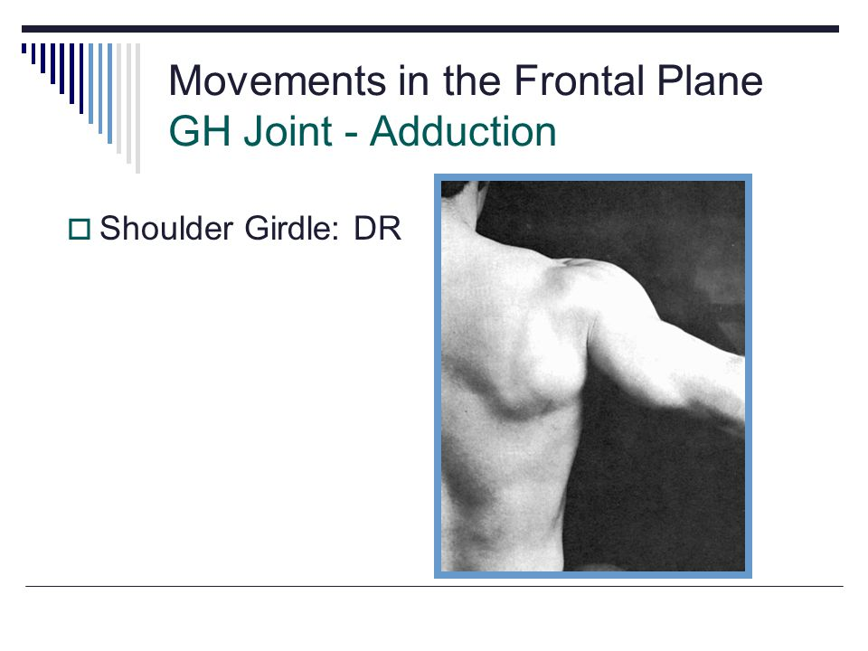 Movements in the Frontal Plane GH Joint - Adduction Shoulder Girdle: DR Fig 5.17
