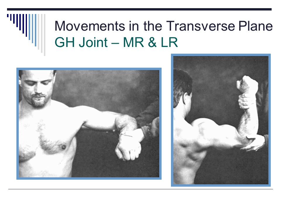 Movements in the Transverse Plane GH Joint – MR & LR Fig 5.22a