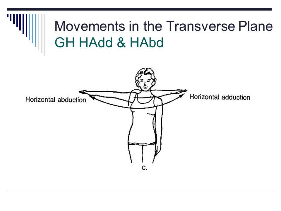 Movements in the Transverse Plane GH HAdd & HAbd