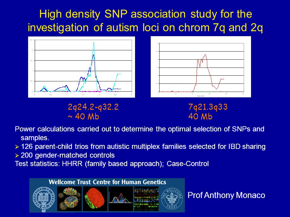 High density SNP association study for the investigation of autism loci on chrom 7q and 2q 2q24.2-q32.2 ~ 40 Mb 7q21.3q33 40 Mb Power calculations carried out to determine the optimal selection of SNPs and samples.
