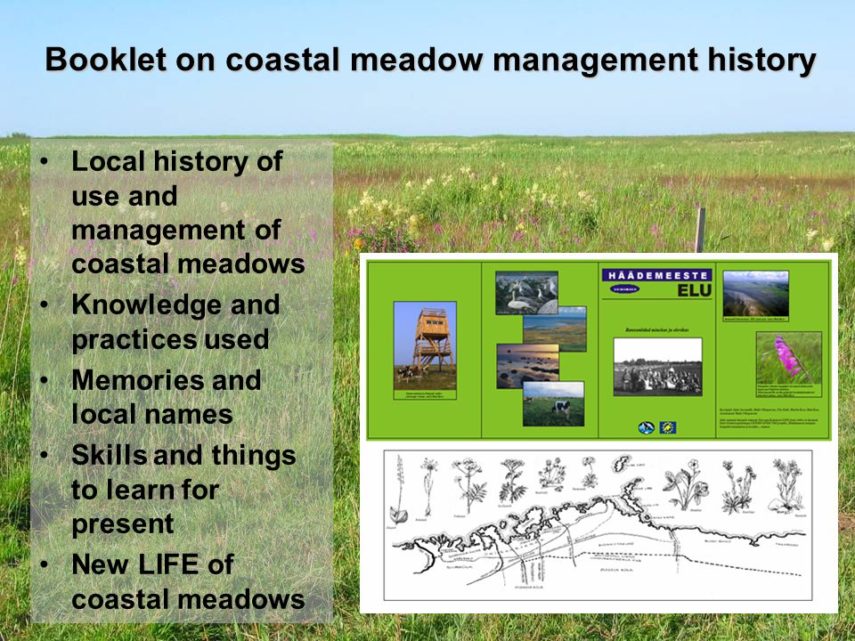 Booklet on coastal meadow management history Local history of use and management of coastal meadows Knowledge and practices used Memories and local names Skills and things to learn for present New LIFE of coastal meadows