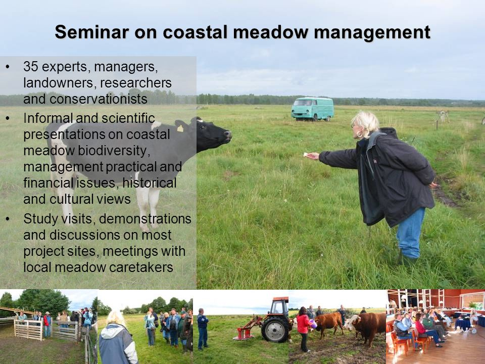 Seminar on coastal meadow management 35 experts, managers, landowners, researchers and conservationists Informal and scientific presentations on coastal meadow biodiversity, management practical and financial issues, historical and cultural views Study visits, demonstrations and discussions on most project sites, meetings with local meadow caretakers