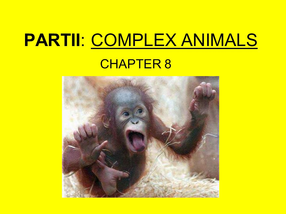 PARTII: COMPLEX ANIMALS CHAPTER 8