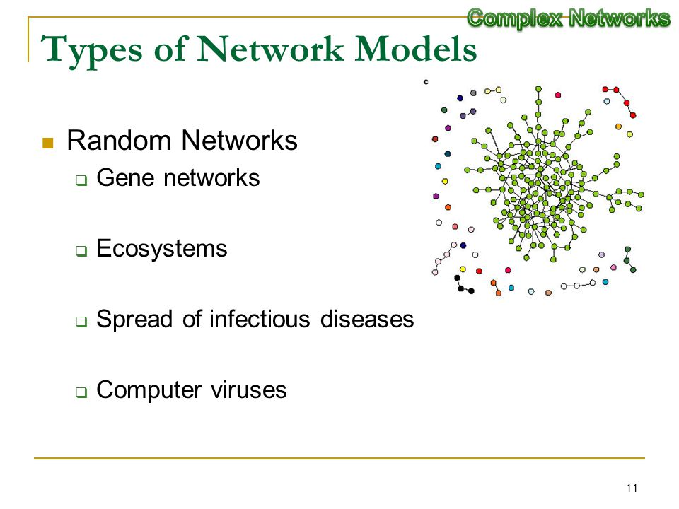 Types of Network Models Random Networks Gene networks Ecosystems Spread of infectious diseases Computer viruses 11
