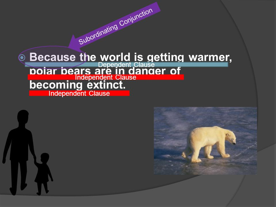 Because the world is getting warmer, polar bears are in danger of becoming extinct.