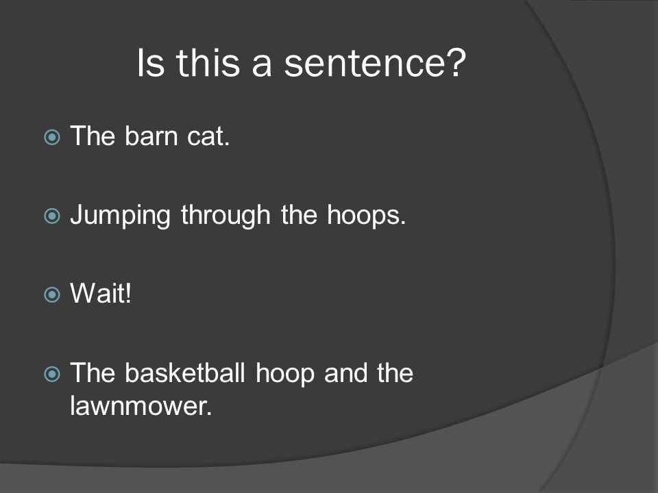 Is this a sentence. The barn cat. Jumping through the hoops.