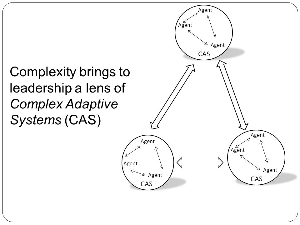 Organization Level Executive Level Production Level Agent CAS Agent CAS Agent CAS Agent CAS Complexity Leadership Theory (CLT) addresses bureaucracy and CAS together.