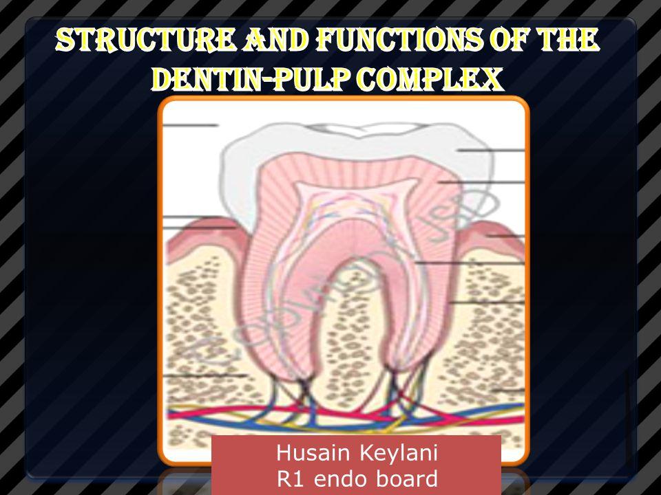 Dentin-pulp complex .