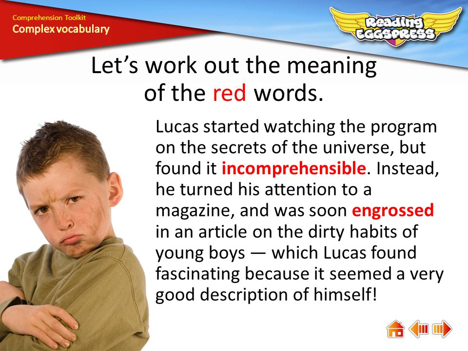 Comprehension Toolkit Lets work out the meaning of the red words.