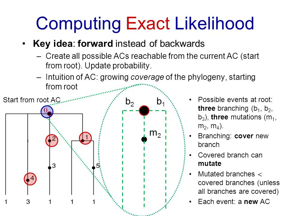 Computing Exact Likelihood Key idea: forward instead of backwards –Create all possible ACs reachable from the current AC (start from root).