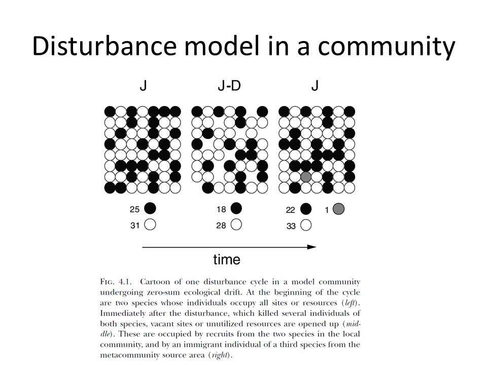 Disturbance model in a community