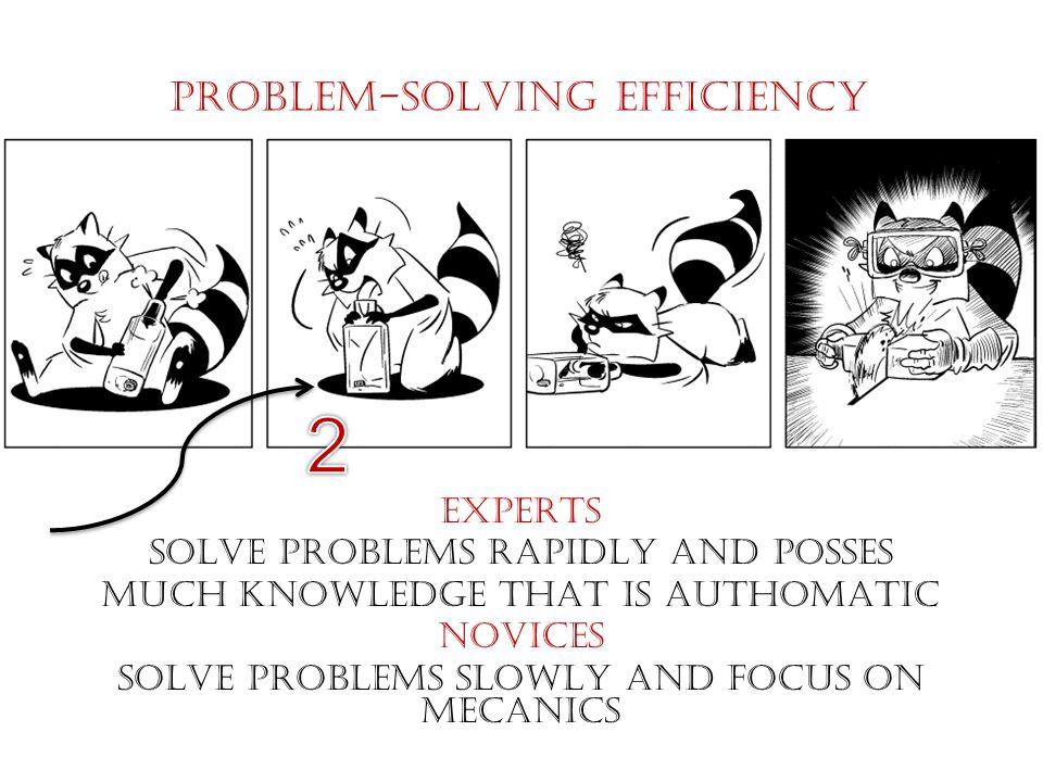 PROBLEM-SOLVING EFFICIENCY EXPERTS SOLVE PROBLEMS RAPIDLY AND POSSES MUCH KNOWLEDGE THAT IS AUTHOMATIC NOVICES SOLVE PROBLEMS SLOWLY AND FOCUS ON MECANICS