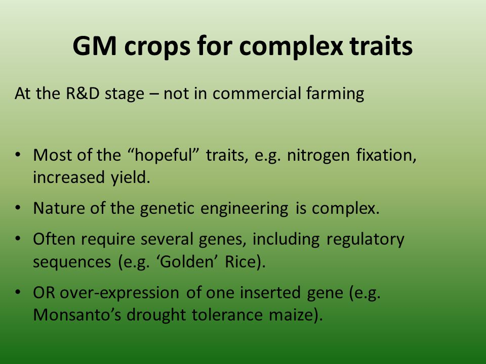 GM crops for complex traits At the R&D stage – not in commercial farming Most of the hopeful traits, e.g. nitrogen fixation, increased yield. Nature o