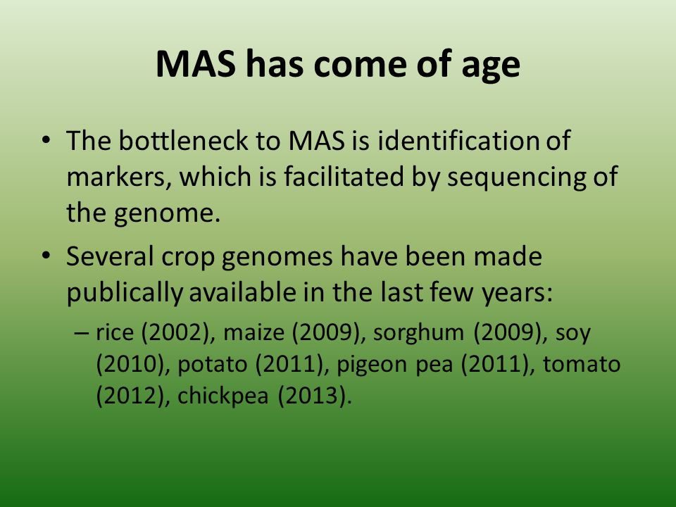 MAS has come of age The bottleneck to MAS is identification of markers, which is facilitated by sequencing of the genome. Several crop genomes have be