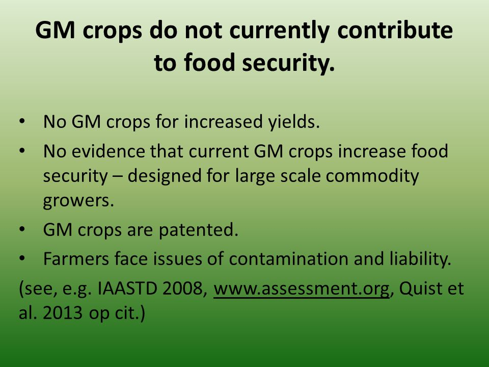 No GM crops for increased yields.
