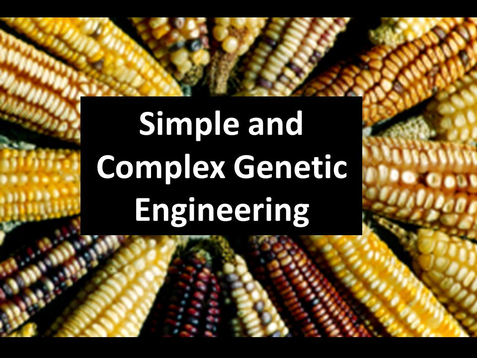 Simple and Complex Genetic Engineering