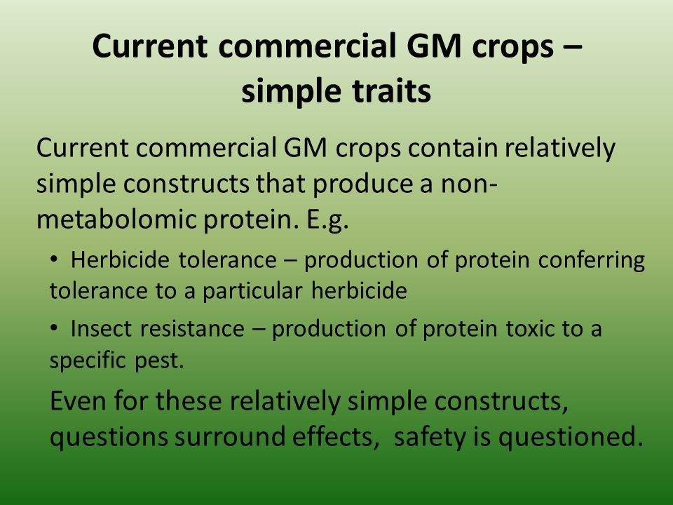 Current commercial GM crops – simple traits Current commercial GM crops contain relatively simple constructs that produce a non- metabolomic protein.