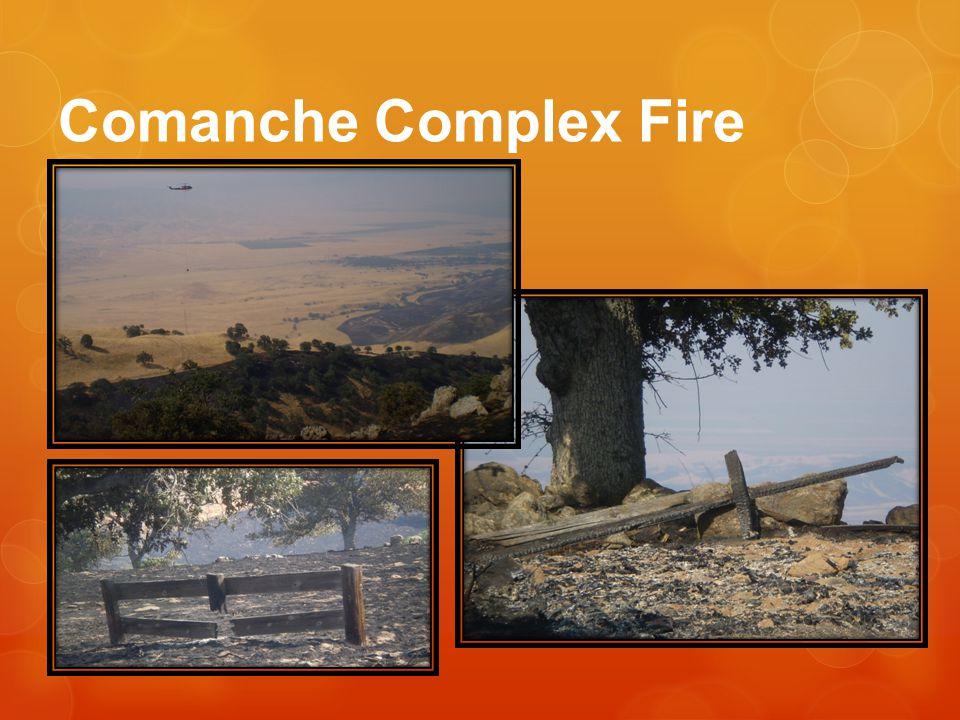 Comanche Complex Fire
