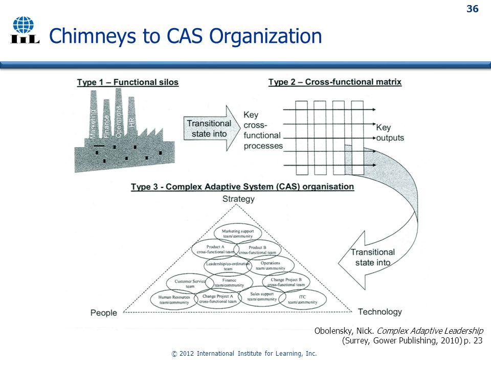 © 2012 International Institute for Learning, Inc.36 Chimneys to CAS Organization Obolensky, Nick.