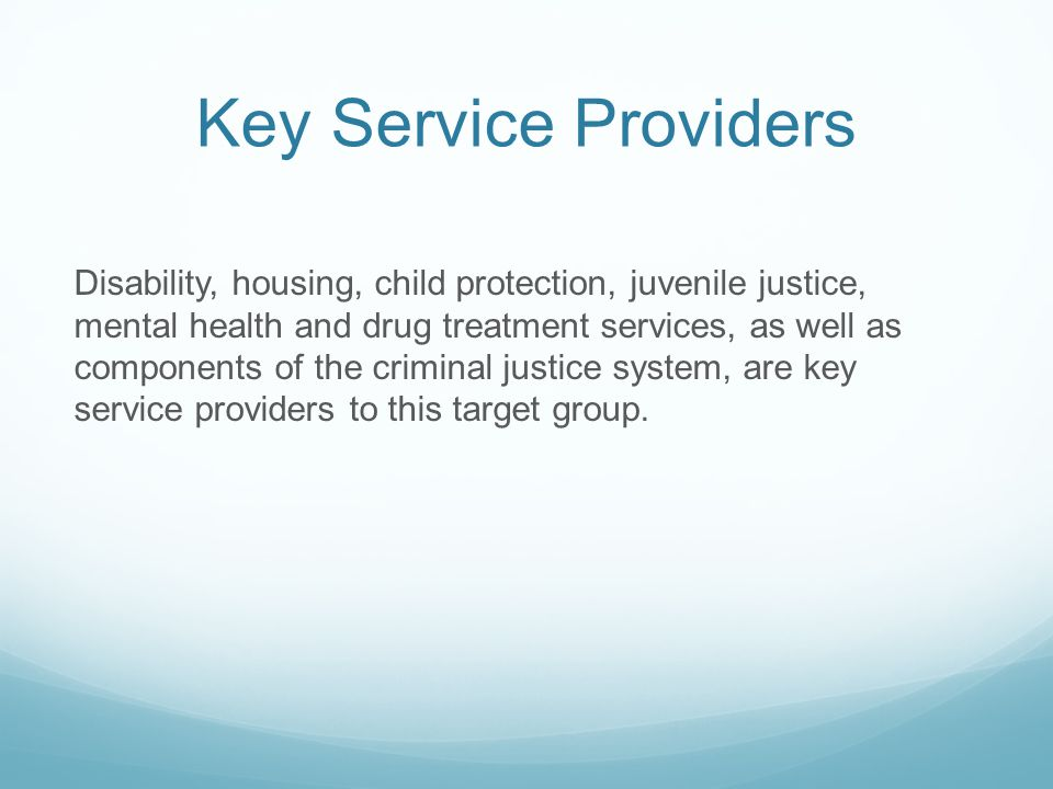Key Service Providers Disability, housing, child protection, juvenile justice, mental health and drug treatment services, as well as components of the