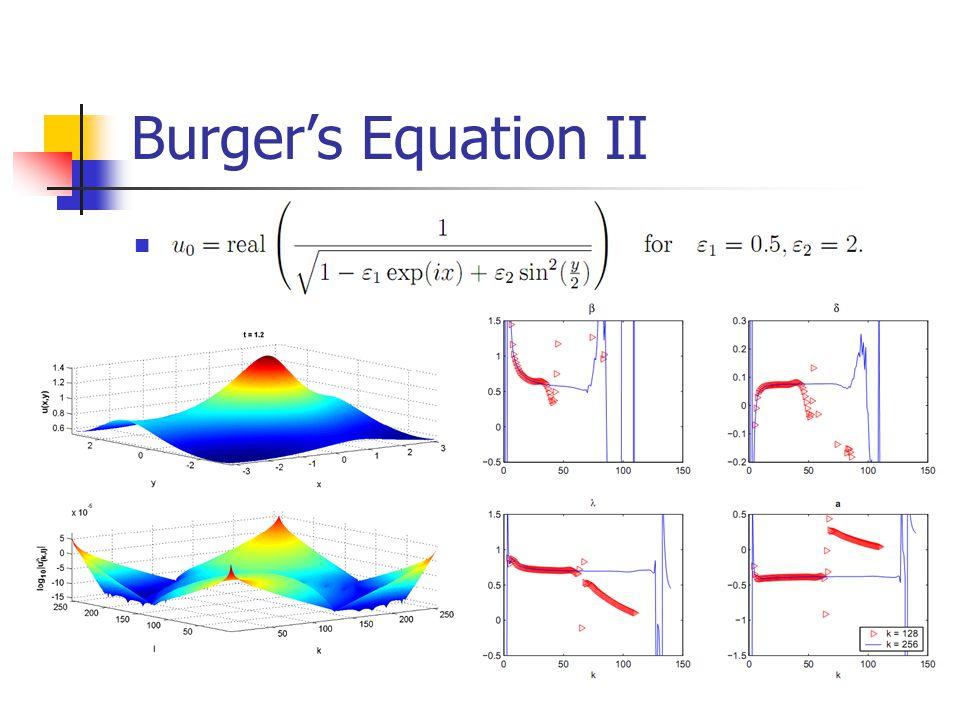 Burgers Equation II