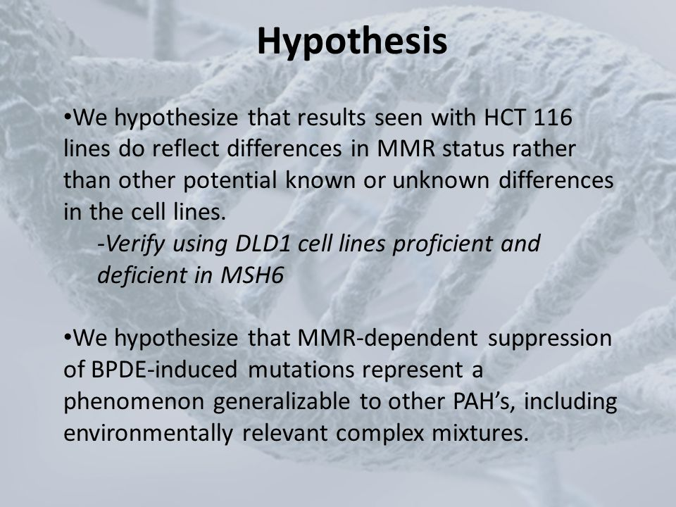 Hypothesis We hypothesize that results seen with HCT 116 lines do reflect differences in MMR status rather than other potential known or unknown diffe