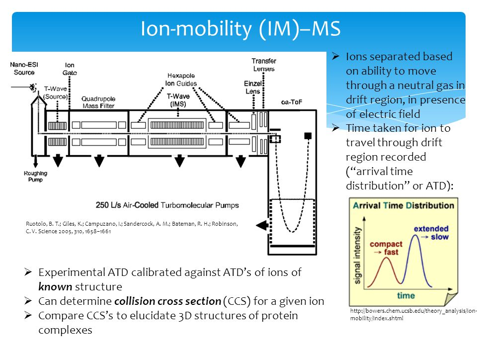 Ion-mobility (IM)–MS Ions separated based on ability to move through a neutral gas in drift region, in presence of electric field Time taken for ion to travel through drift region recorded (arrival time distribution or ATD): Experimental ATD calibrated against ATDs of ions of known structure Can determine collision cross section (CCS) for a given ion Compare CCSs to elucidate 3D structures of protein complexes http://bowers.chem.ucsb.edu/theory_analysis/ion- mobility/index.shtml Ruotolo, B.