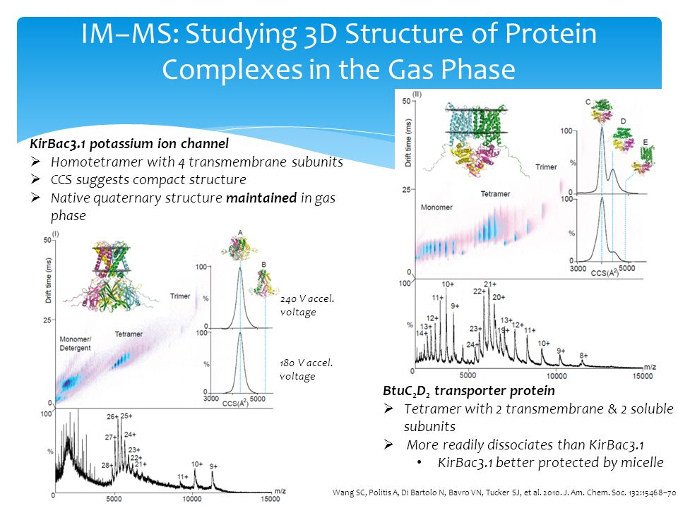 IM–MS: Studying 3D Structure of Protein Complexes in the Gas Phase KirBac3.1 potassium ion channel Homotetramer with 4 transmembrane subunits CCS sugg