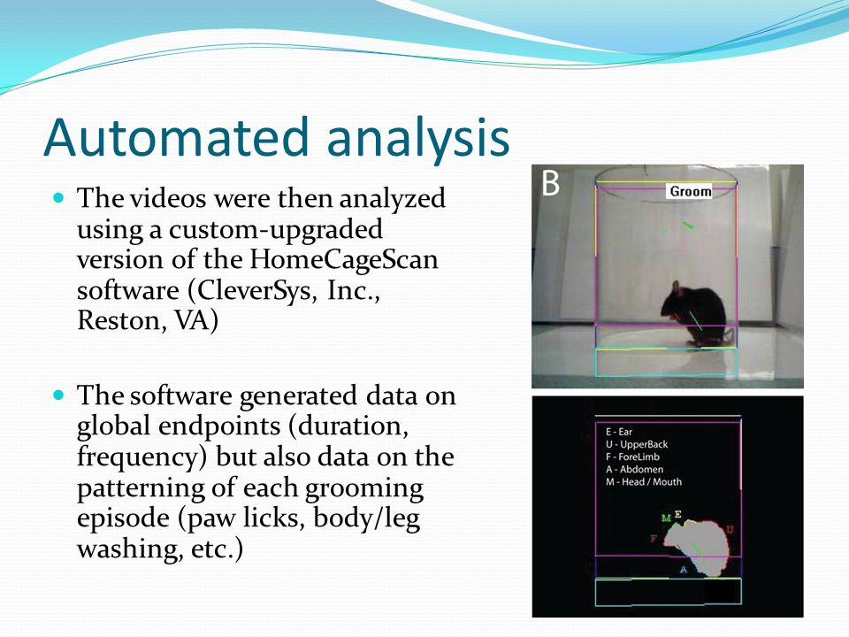 Automated analysis The videos were then analyzed using a custom-upgraded version of the HomeCageScan software (CleverSys, Inc., Reston, VA) The software generated data on global endpoints (duration, frequency) but also data on the patterning of each grooming episode (paw licks, body/leg washing, etc.)