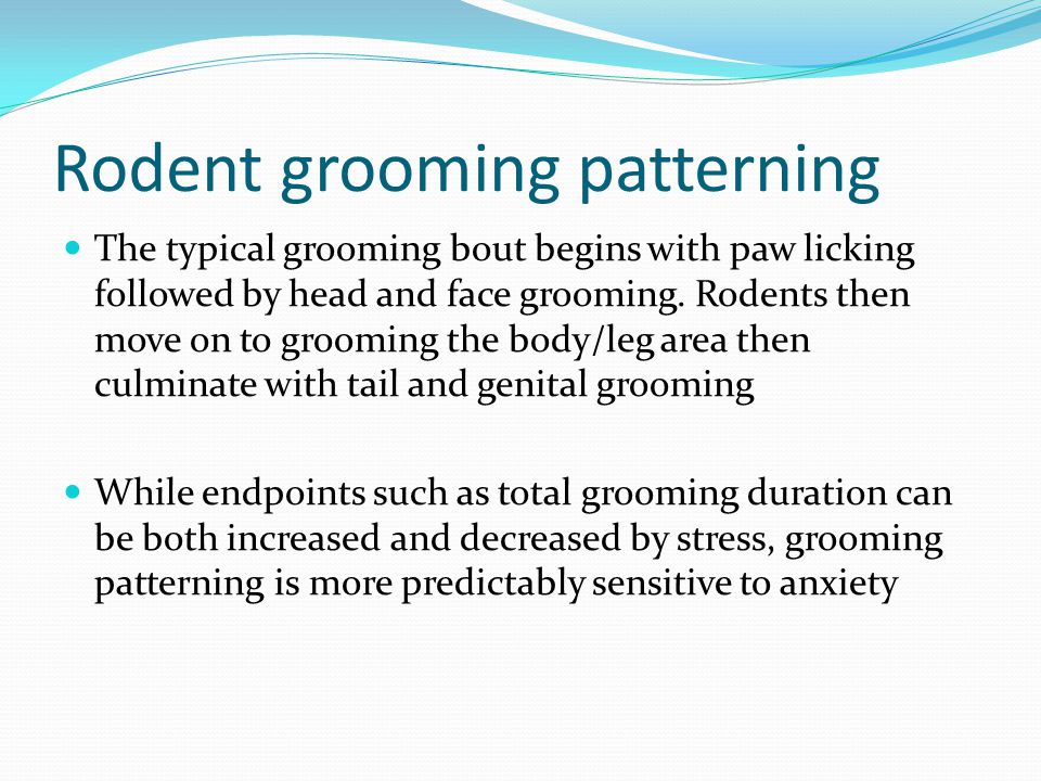 Grooming analysis algorithm Used to accurately describe alterations in rodent grooming syntax ( Kalueff and Tuohimaa, 2004 ) Adapted from Berridge et al., 2004