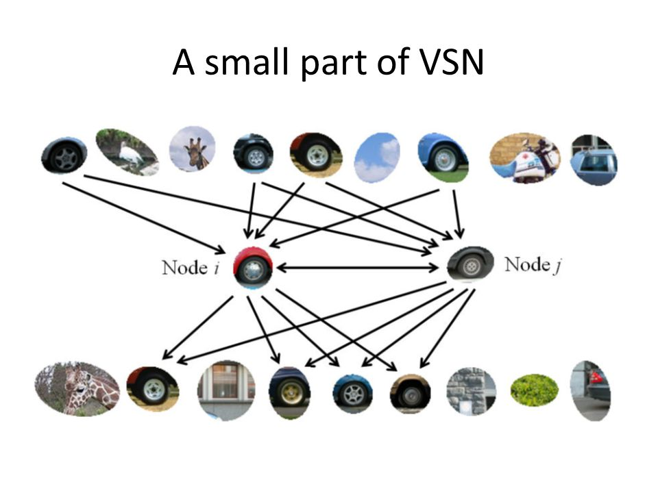 A small part of VSN