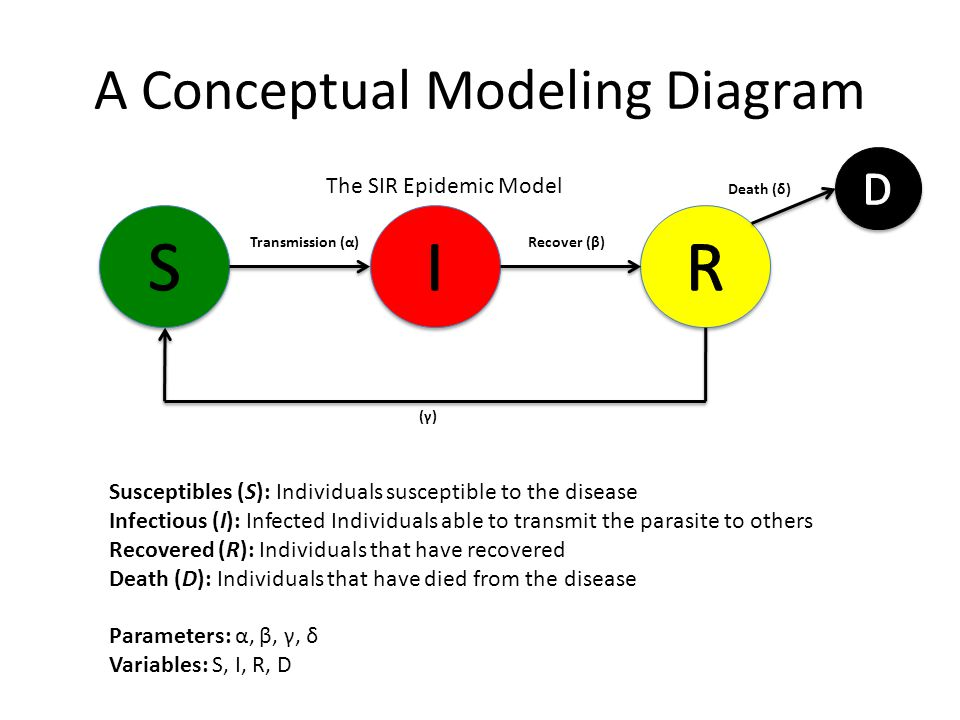 A Conceptual Modeling Diagram Transmission (α) Recover (β) The SIR Epidemic Model Susceptibles (S): Individuals susceptible to the disease Infectious (I): Infected Individuals able to transmit the parasite to others Recovered (R): Individuals that have recovered Death (D): Individuals that have died from the disease Parameters: α, β, γ, δ Variables: S, I, R, D Death (δ) (γ)