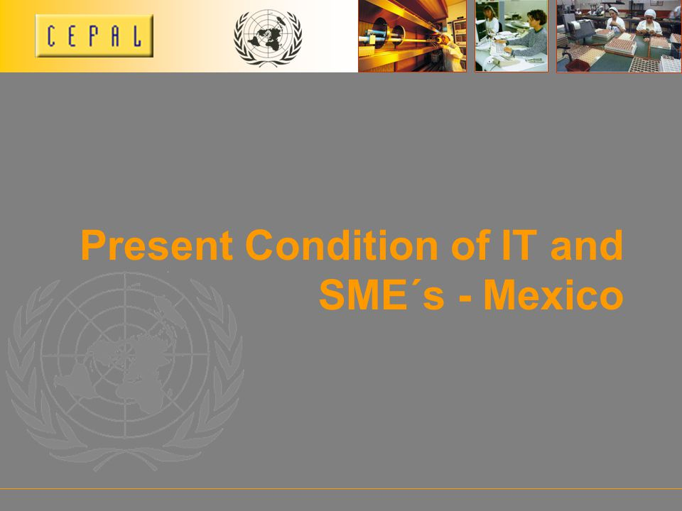 Present Condition of IT and SME´s - Mexico