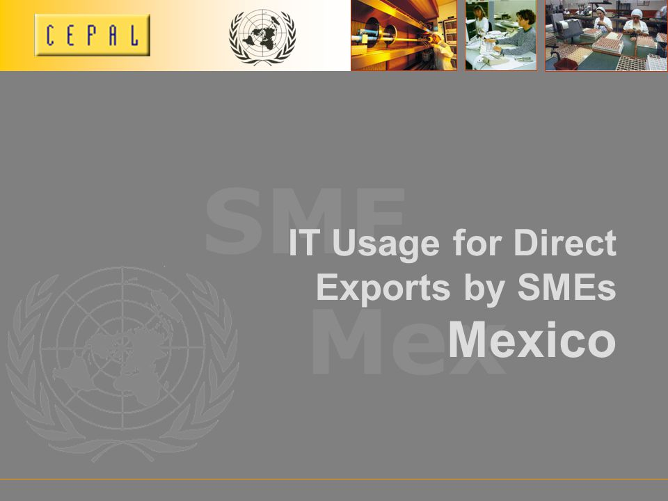Mex SME IT Usage for Direct Exports by SMEs Mexico
