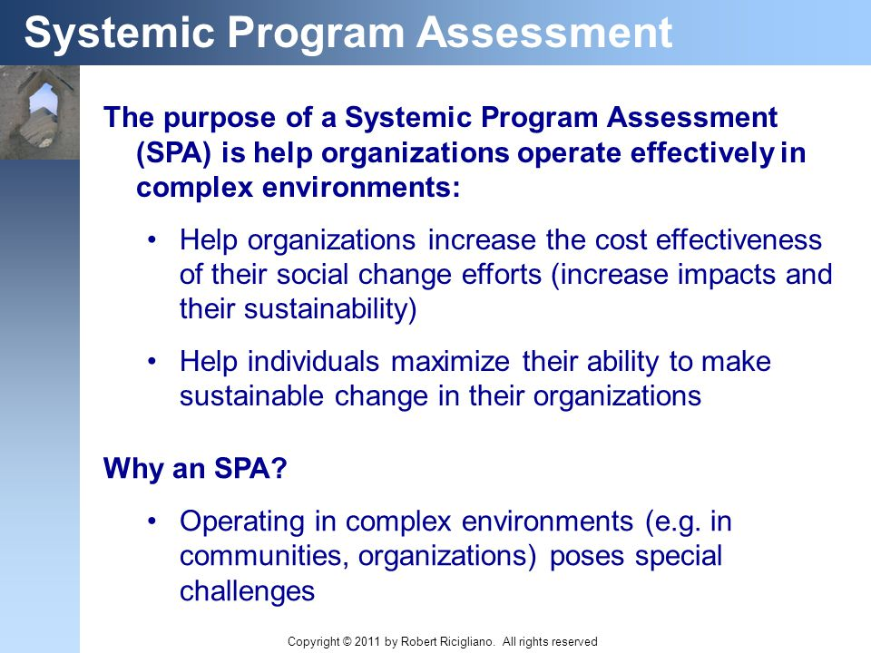 The purpose of a Systemic Program Assessment (SPA) is help organizations operate effectively in complex environments: Help organizations increase the cost effectiveness of their social change efforts (increase impacts and their sustainability) Help individuals maximize their ability to make sustainable change in their organizations Systemic Program Assessment Why an SPA.