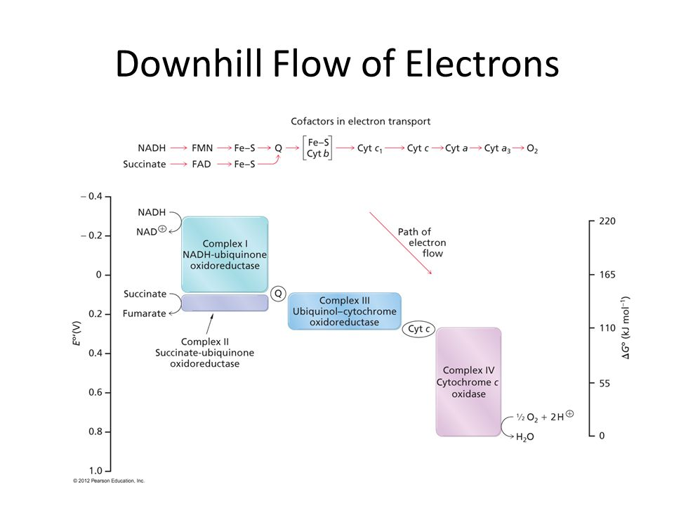Downhill Flow of Electrons