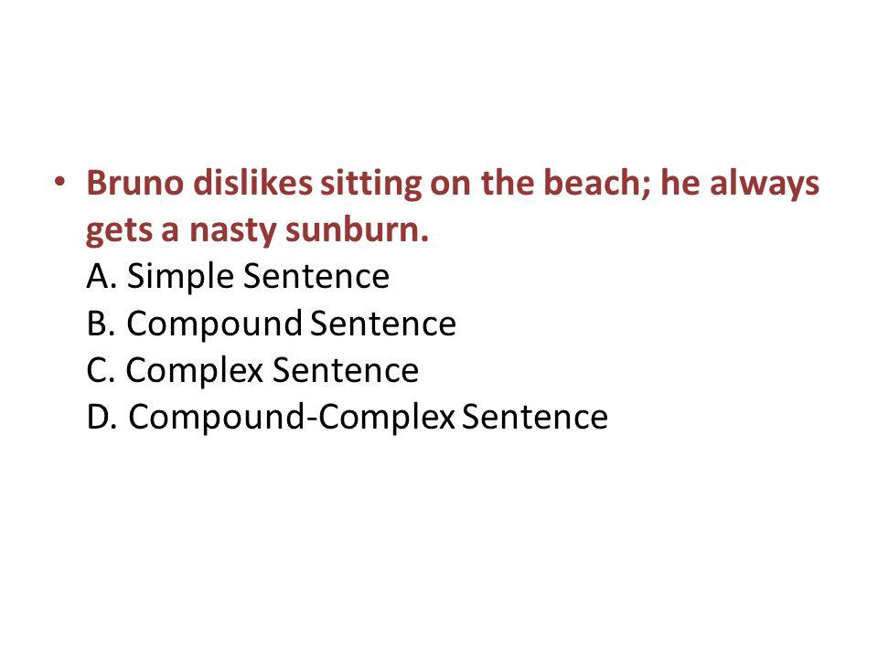 Bruno dislikes sitting on the beach; he always gets a nasty sunburn.