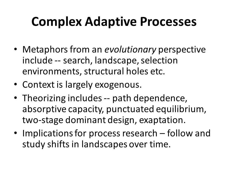 Complex Adaptive Processes Metaphors from an evolutionary perspective include -- search, landscape, selection environments, structural holes etc.