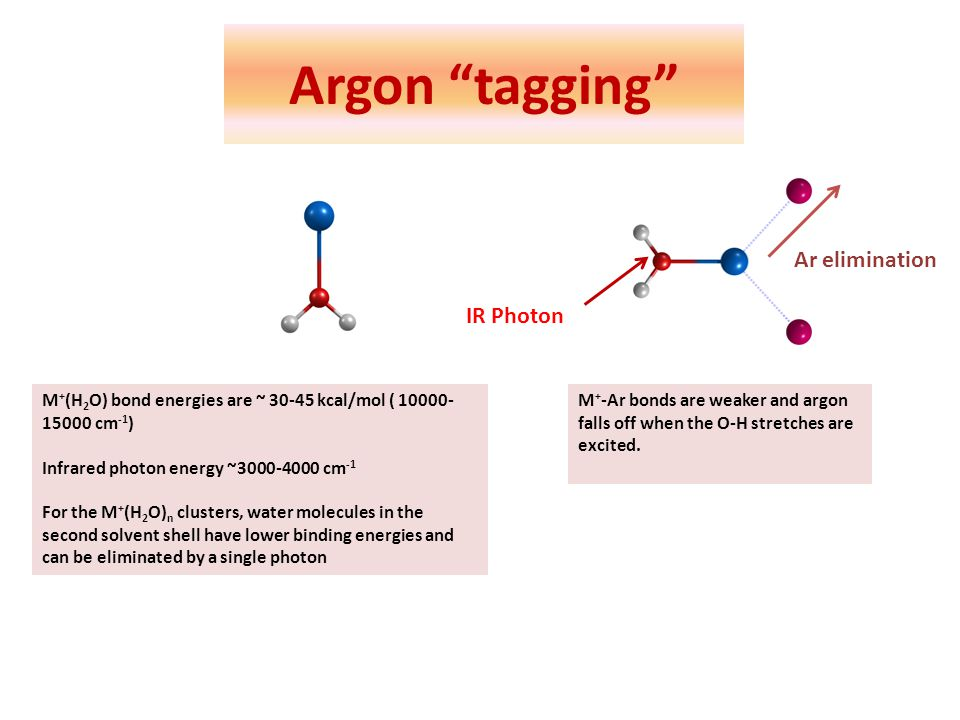 Argon tagging M + (H 2 O) bond energies are ~ 30-45 kcal/mol ( 10000- 15000 cm -1 ) Infrared photon energy ~3000-4000 cm -1 For the M + (H 2 O) n clus