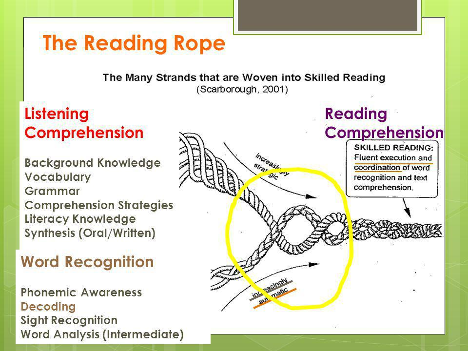 Listening Comprehension Background Knowledge Vocabulary Grammar Comprehension Strategies Literacy Knowledge Synthesis (Oral/Written) Word Recognition Phonemic Awareness Decoding Sight Recognition Word Analysis (Intermediate) Reading Comprehension The Reading Rope