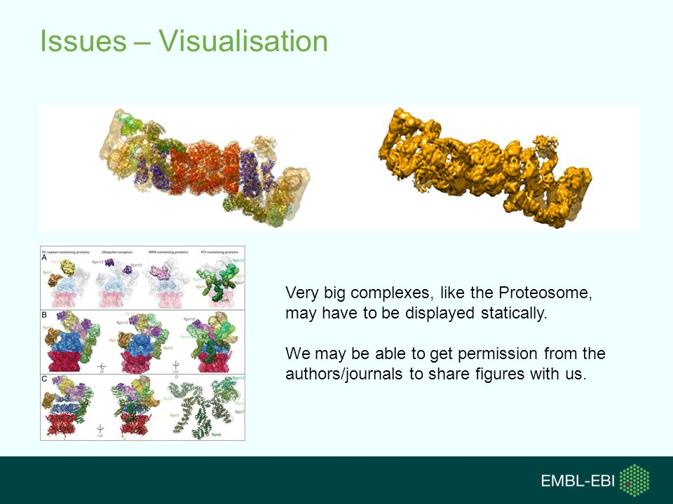 Issues – Visualisation Very big complexes, like the Proteosome, may have to be displayed statically.